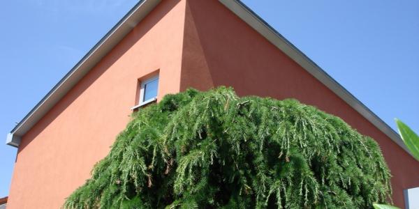 PH12 - einfamilienwohnhaus mit einliegerwohnung